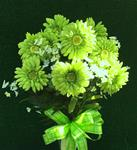 45 b.St. Patrick's Day Silk Bouquet